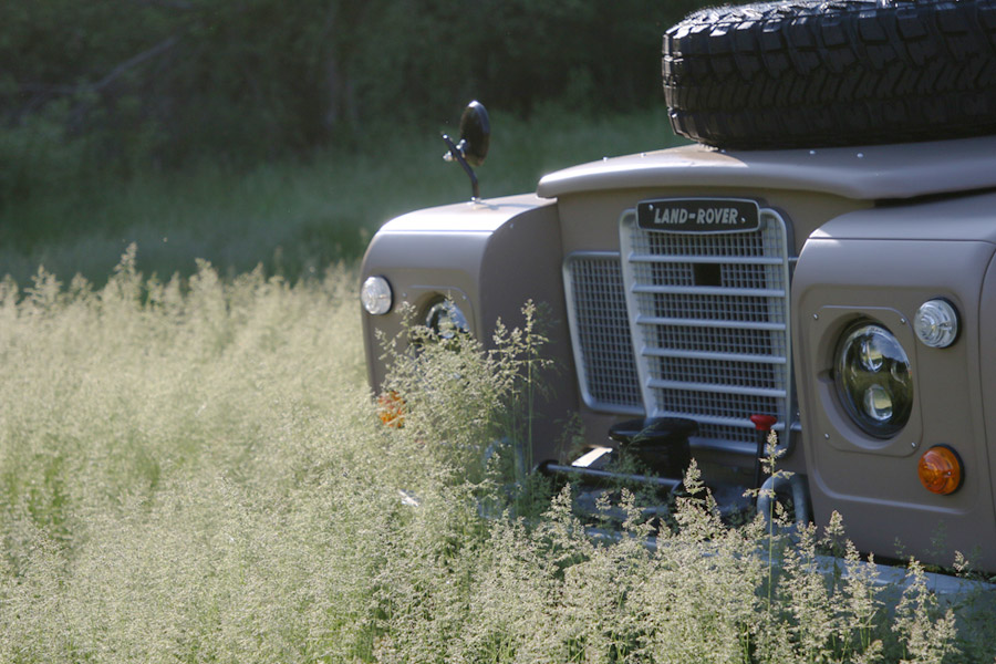 Land Rover Series II in the Grass